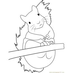 Adorable Squirrel Free Coloring Page for Kids