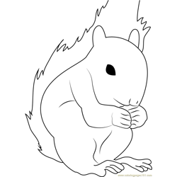 Squirrel Look Free Coloring Page for Kids