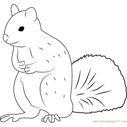 Squirrel Man Free Coloring Page for Kids