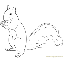 Squirrel Up Free Coloring Page for Kids