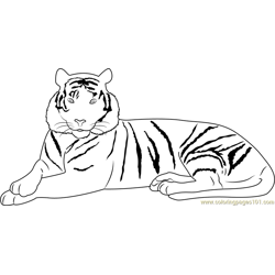 Elegant Tiger Free Coloring Page for Kids