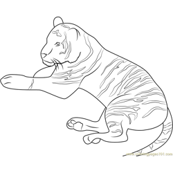 Tiger Relaxing Free Coloring Page for Kids