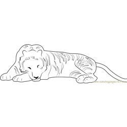 Tiger Sleeping Free Coloring Page for Kids