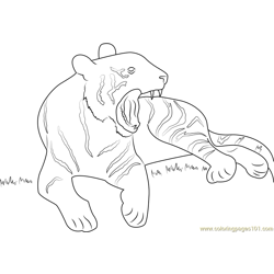 Tiger Yawn Full Free Coloring Page for Kids
