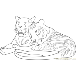 Tiger in Love Free Coloring Page for Kids