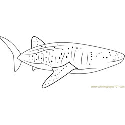 Blue Whale Free Coloring Page for Kids