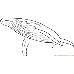 Endless Ocean Whales Free Coloring Page for Kids