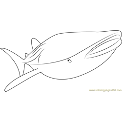 Smooth Whale Free Coloring Page for Kids