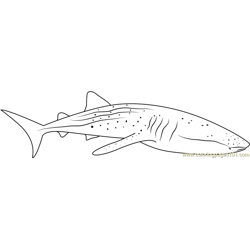 Whale Shark Diver Free Coloring Page for Kids