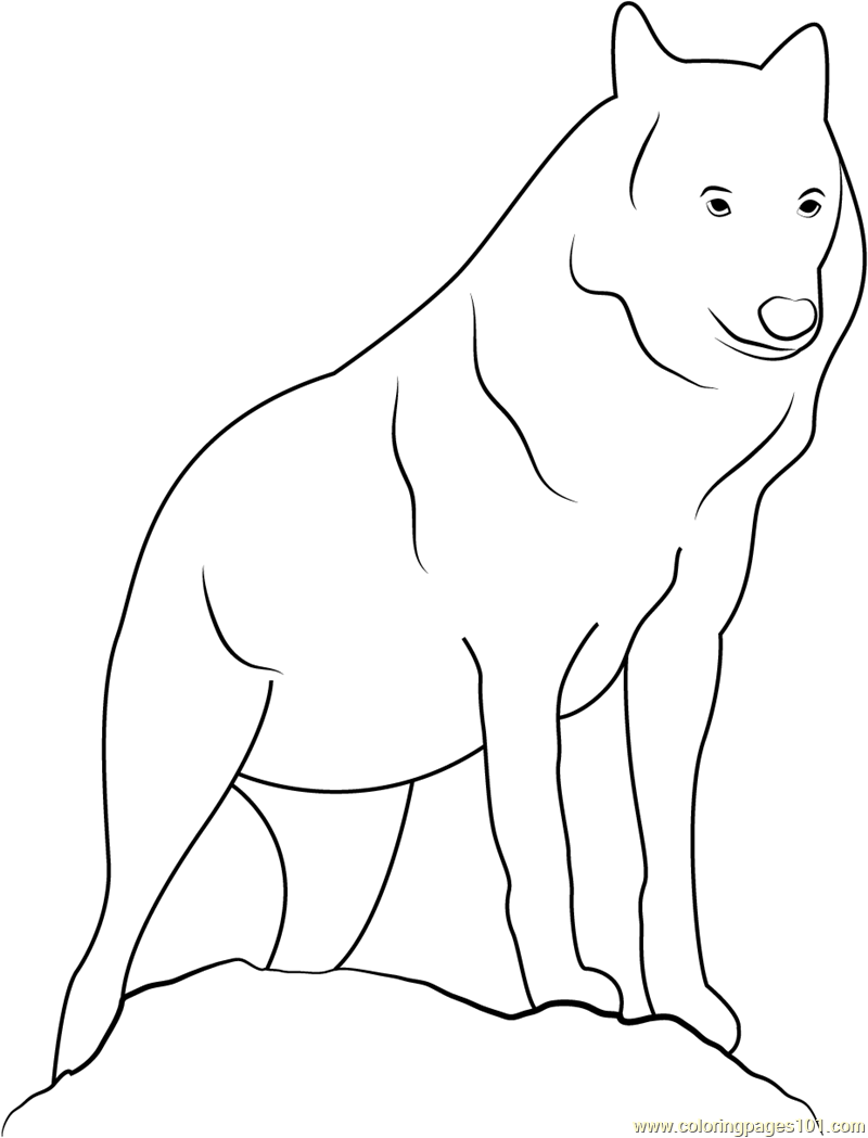 lupus coloring pages - photo#4