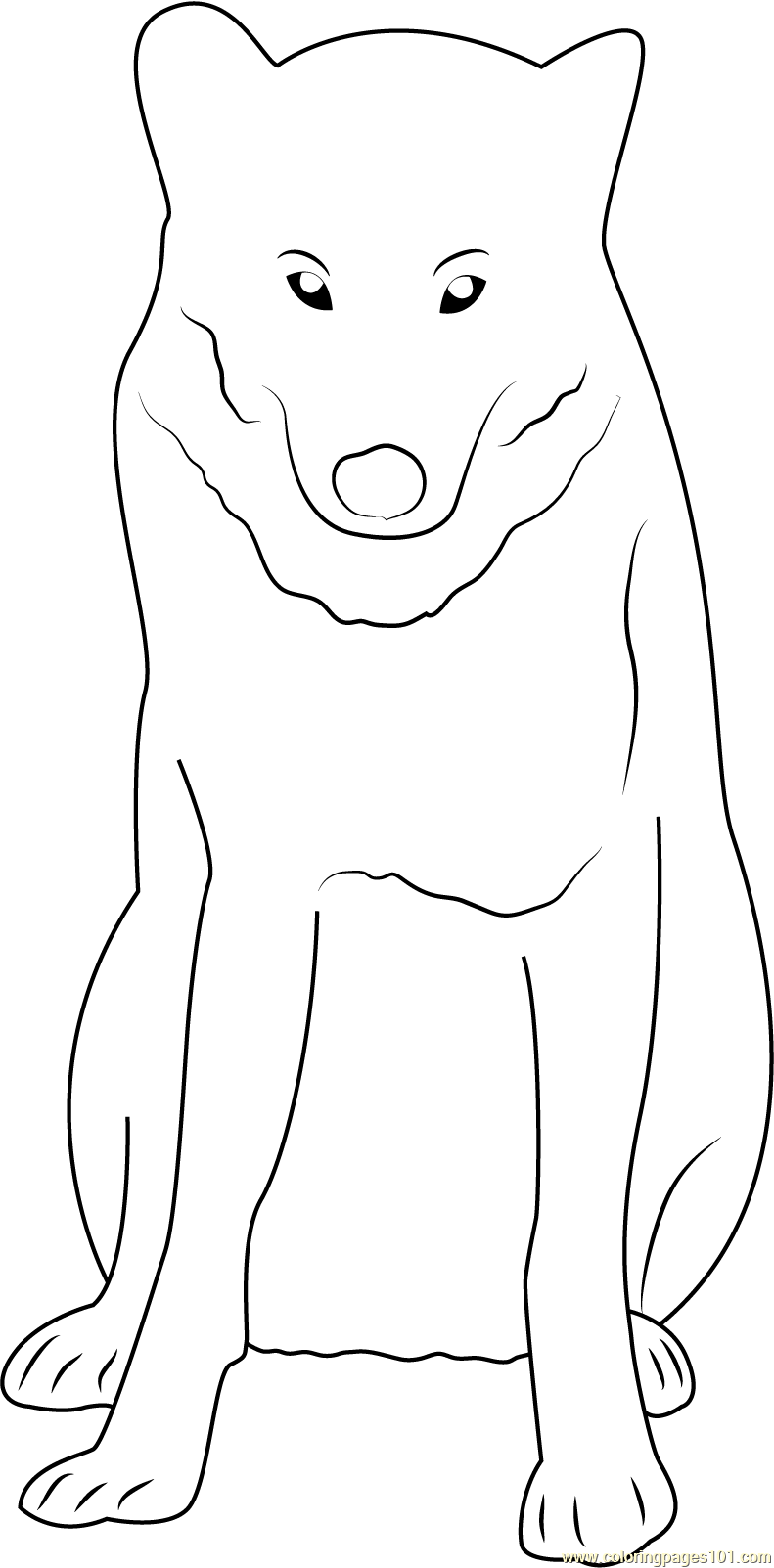 Gray wolf in minnesota coloring page free wolf coloring for Grey wolf coloring pages