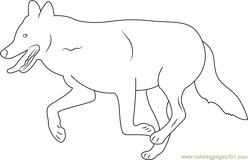 Mexican Wolf Coloring Page