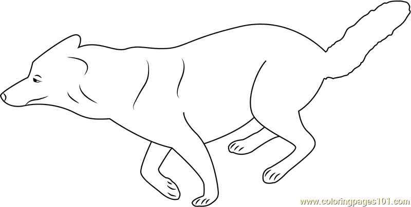 Running Wolf Coloring Page