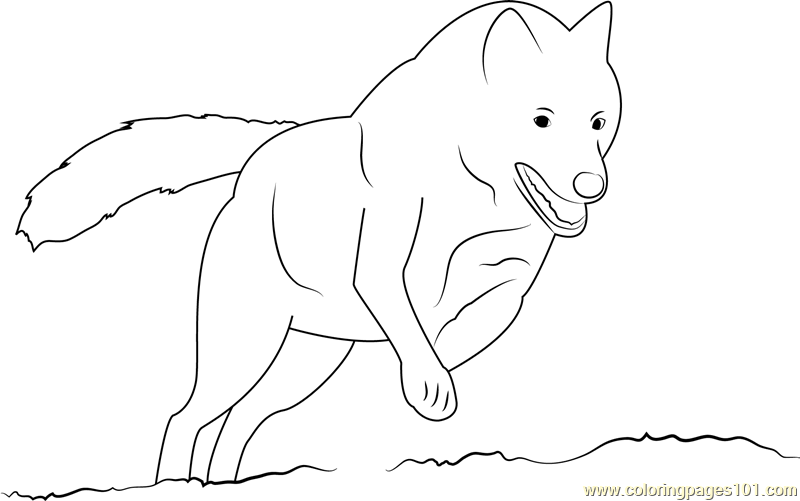 Wolf On Hunting Coloring Page - Free Wolf Coloring Pages ...