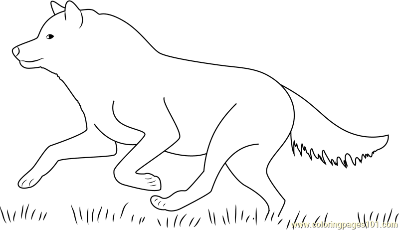 Wolf Running Coloring Page