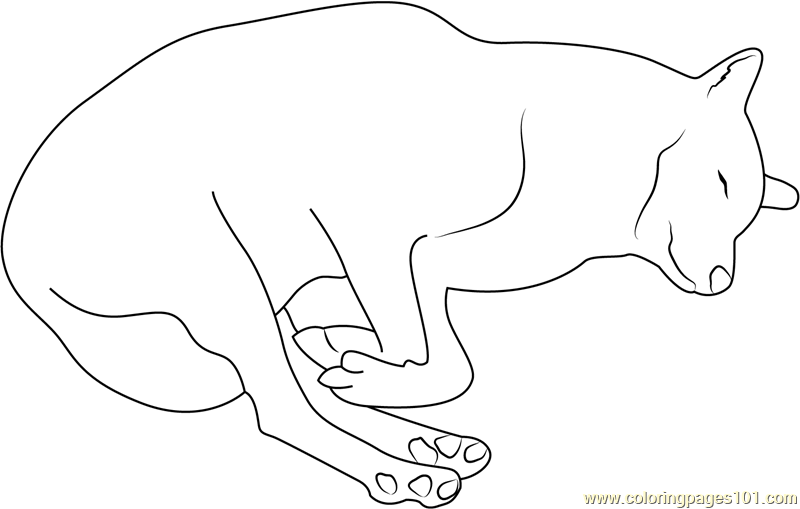 Wolf Sleeping Coloring Page - Free Wolf Coloring Pages ...