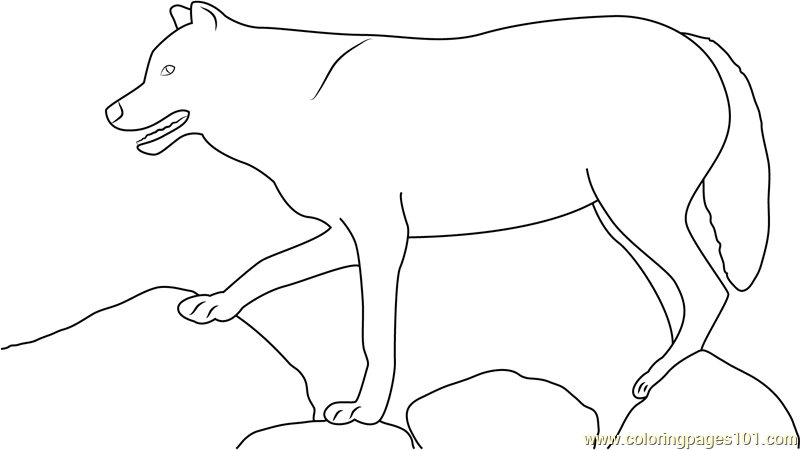 Wolf Standing On Rock Coloring Page