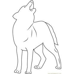 Indian Wolf Free Coloring Page for Kids