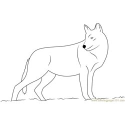 Smiling Wolf Free Coloring Page for Kids