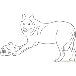 Tierpark Sababurg Wolf Free Coloring Page for Kids