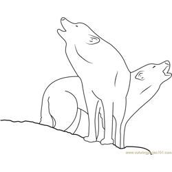 Two Wolf Free Coloring Page for Kids