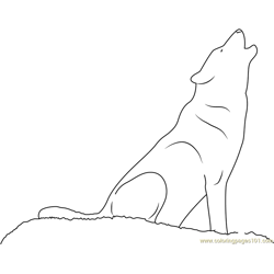 Wolf Howling Free Coloring Page for Kids