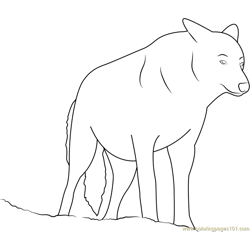 Wolf Look Free Coloring Page for Kids