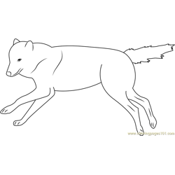 Wolf Running on the Pond Free Coloring Page for Kids