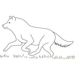 Wolf Running Free Coloring Page for Kids