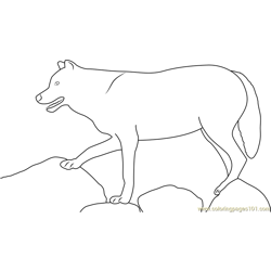 Wolf Standing On Rock Free Coloring Page for Kids