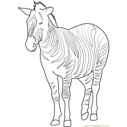 Plains Zebra Free Coloring Page for Kids