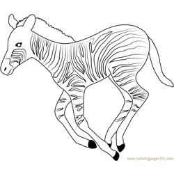 Running Zebra Free Coloring Page for Kids