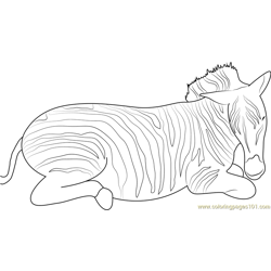 Sleepy Zebra Free Coloring Page for Kids