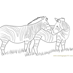 Zebra Looking Back Free Coloring Page for Kids