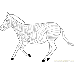 Zebra Run Free Coloring Page for Kids