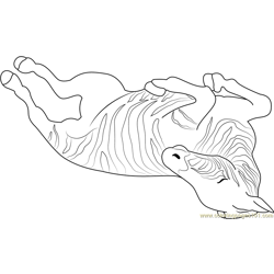 Zebra Sleeping Free Coloring Page for Kids
