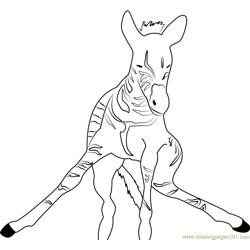 Zebra look at me coloring page