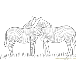 Zebras in Love Free Coloring Page for Kids