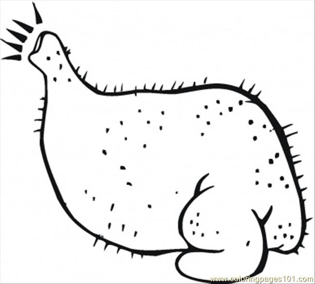 ready chicken coloring page