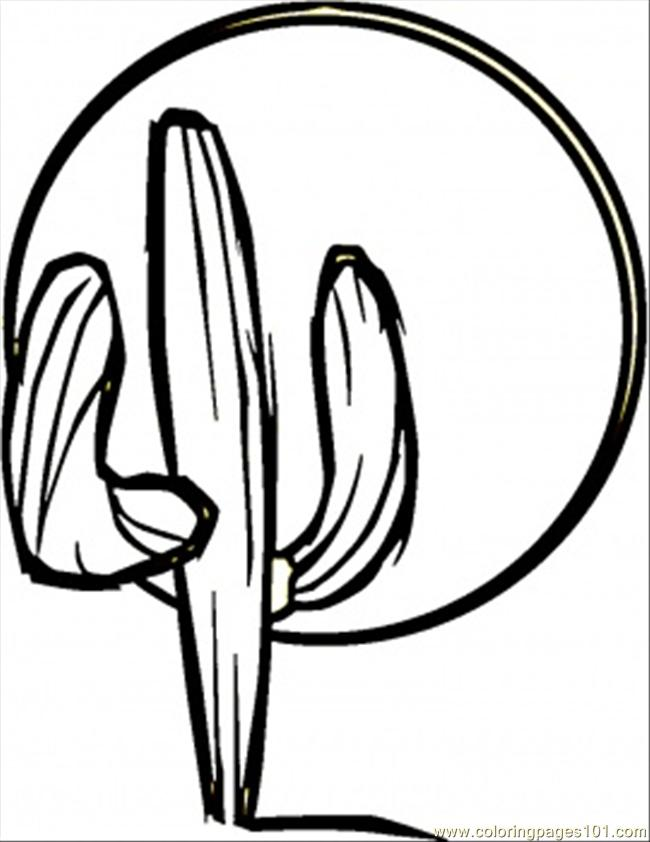Cactus coloring page free mexico coloring pages for Cactus coloring pages