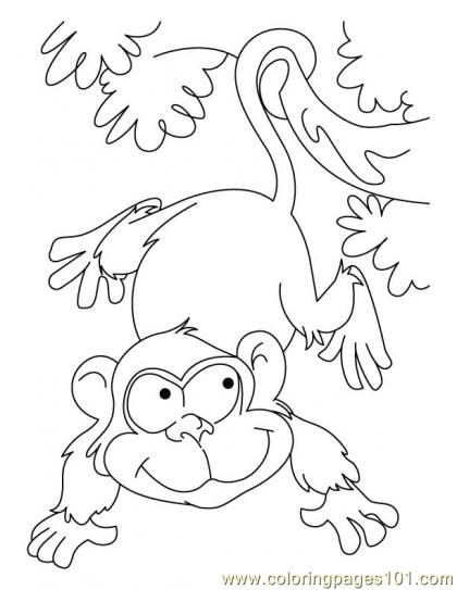 Ape Coloring Page4 Coloring Page