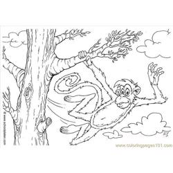 Res Pages Photo Monkey Dl2863 Free Coloring Page for Kids