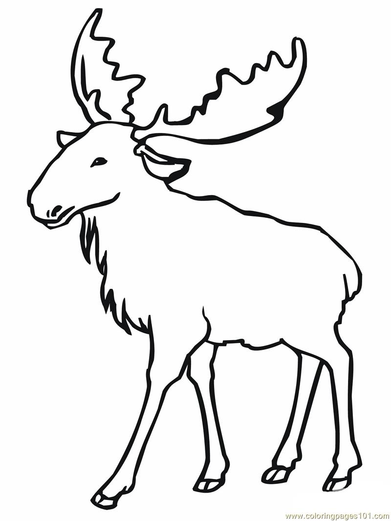 Eurasian elk moose Coloring Page Free Mouse Coloring