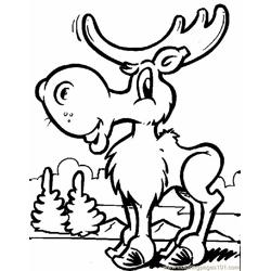 Bovid Moose coloring page