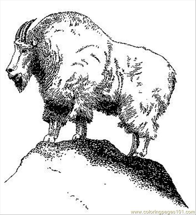 Mountain Goat Coloring Page Free Mountain Coloring Pages