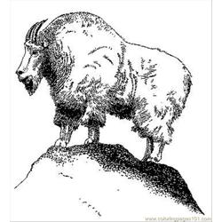 Mountain Goat Free Coloring Page for Kids