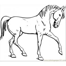 0horse Coloring Pages