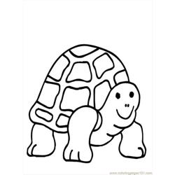 Turtlecoloring01