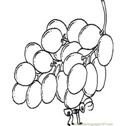 Ant N Grapes Free Coloring Page for Kids