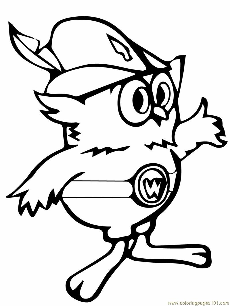 woodsy owl coloring page free owl coloring pages